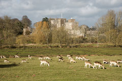 Het Kasteelzuiden Devon England het UK van de poederham Stock Fotografie