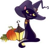 Het katje van Halloween met pompoen Royalty-vrije Stock Foto