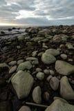 Het keistrand tijdens een bewolkte zonsondergang met groen zeewier behandelde rotsen - Veczemju Klintis, Letland - April 13, 2019 royalty-vrije stock foto