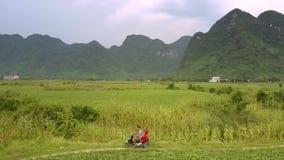 Het kerelmeisje houdt motorfiets dichtbij groot zoete maïsgebied tegen stock video