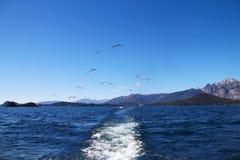 Het kielzog van de boot Stock Foto