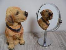 Het kijken in de spiegel Stock Foto's