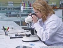 Het kijken door een microscoop Stock Fotografie