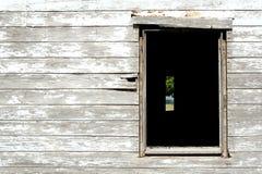 Het kijken door het venster Royalty-vrije Stock Afbeelding