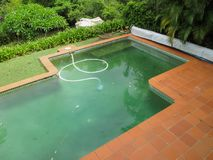 Het kijken neer op een vuil groen zwembad met een vacuüm daarin omringd door tropische bomen en met een dekking rolde tot één sid royalty-vrije stock foto's