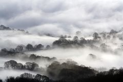 Het kijken neer op Engelse landbouwgrond in de winter Met bomen en hagen op een koude, sneeuw, mistige dag worden gesilhouetteerd royalty-vrije stock afbeelding