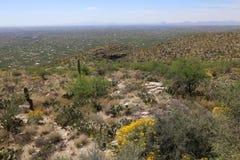 Het kijken neer op Tucson Stock Foto