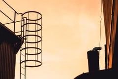 Het kijken omhoog de Ladder royalty-vrije stock afbeelding