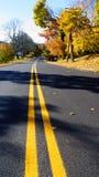 Het kijken onderaan een straat op een de herfstdag Stock Fotografie