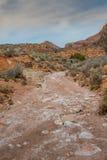 Het kijken onderaan Huber Wash in Utah Royalty-vrije Stock Fotografie