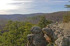 Het kijken uit op Forest Panorama Stock Foto