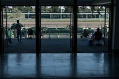 Het kijken uit op het paardspoor Stock Foto's
