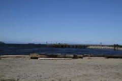 Het kijken van een strand met drijfhout over het water aan een pijler royalty-vrije stock afbeelding