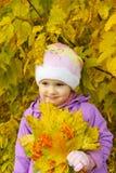 Het kind Royalty-vrije Stock Afbeeldingen