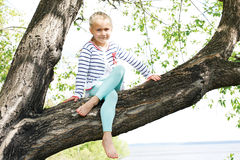 Het kind beklimt een boom in de vroege ochtend op een de zomerdag Stock Afbeelding