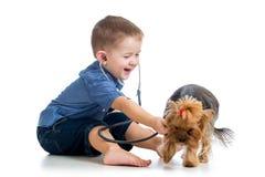 Het kind die van de jongen hondpuppy op witte achtergrond onderzoeken Stock Afbeeldingen