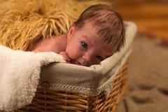 Het kind in een mand royalty-vrije stock foto
