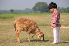 Het kind en het schaap zijn in ingediend royalty-vrije stock fotografie