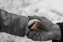 Het kind geeft de man een stuk van roggebrood stock afbeeldingen