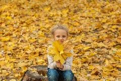 Het kind in het park Royalty-vrije Stock Afbeelding