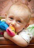 Het kind knaagt aan een stuk speelgoed Royalty-vrije Stock Fotografie