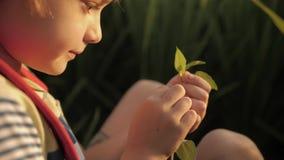 Het kind maakt schetsen van dromen in notitieboekje in groen gras stock videobeelden