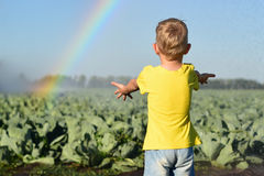 Het kind op een koolgebied vangt waterdalingen Stock Foto's
