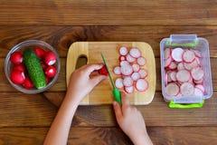 Het kind snijdt radijs voor salade gebruikend keukenmes Groenten voor salade Hoogste mening Stock Afbeelding