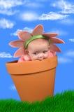 Het kind van de bloem Royalty-vrije Stock Fotografie