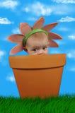 Het kind van de bloem Stock Foto's