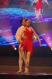 Het klassieke ballet-2007 Jiangxi Feest van het de Lentefestival Stock Afbeelding