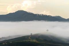 Het kleine dorp in mist, ergens dichtbij Dalat, Vietnmam Stock Foto