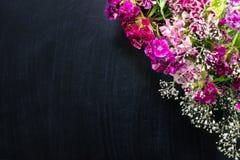 Het kleine gevoelige roze, purpere, lilac en witte kader van de bloemenhoek stock fotografie