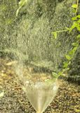 Het kleine hoofd bespattende water van de tuinirrigatie stock foto