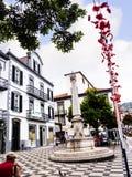 Het kleine Vierkant met fontein dichtbij theCathedral riep Se in Funchal op het Eiland Madiera Stock Foto
