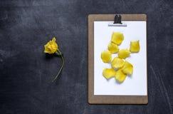 Het klembord met en aPetals van geel namen op zwarte achtergrond toe V Stock Foto