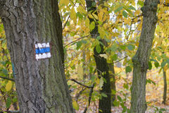 Het kleurrijke blauwe teken van de de herfsttoerist Stock Afbeelding