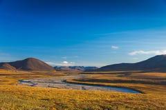 Het kleurrijke de herfsttoendra en Noordpoolgebied van rivieramguema Stock Afbeeldingen