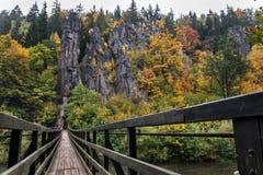 Het kleurrijke massief van de de herfstrots stock afbeelding