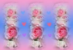 Het kleurrijke roze en witte behang van bonicarozen stock illustratie
