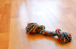 Het kleurrijke stuk speelgoed van de puppyhond op de vloer Stock Foto's