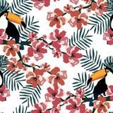 Het kleurrijke tropische naadloze patroon met grappige toekannen, bloeit en doorbladert De zomer vectorachtergrond Grafische text stock afbeelding