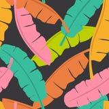 Het kleurrijke tropische naadloze patroon van het banaanblad stock illustratie