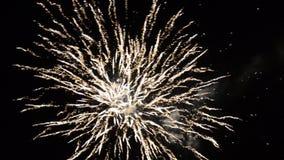 Het kleurrijke vuurwerk van de nieuwjaarviering Gloeiend, multicolored en fonkelingsvuurwerk op de 's nachts hemel Vuurwerkverton stock videobeelden