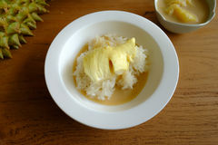 Het kleverige rijst toping met durian in de kokosmelk royalty-vrije stock foto