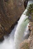 Het kloof van de de rivierwaterval van Yellowstone royalty-vrije stock afbeelding