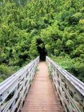 Het kloof van het bamboe Royalty-vrije Stock Afbeelding
