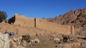 Het Klooster van heilige Catherines. Sinai Schiereiland. Egypte stock footage