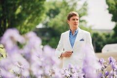 Het knappe elegante mens lopen royalty-vrije stock afbeeldingen