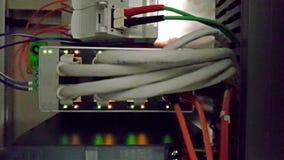 Het knipperen netwerk ethernet actieve schakelaar met verbonden kabels in serverruimte stock video